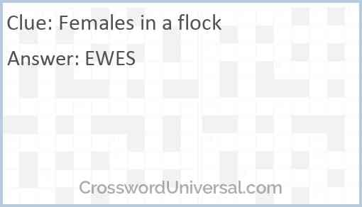 Females in a flock Answer
