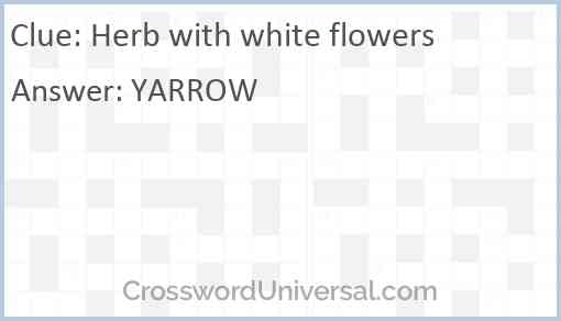 Herb with white flowers Answer