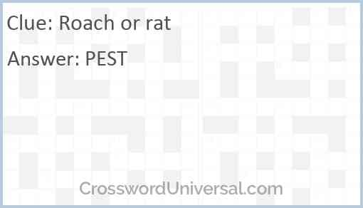 Roach or rat Answer