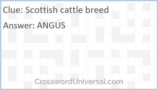 Scottish cattle breed Answer