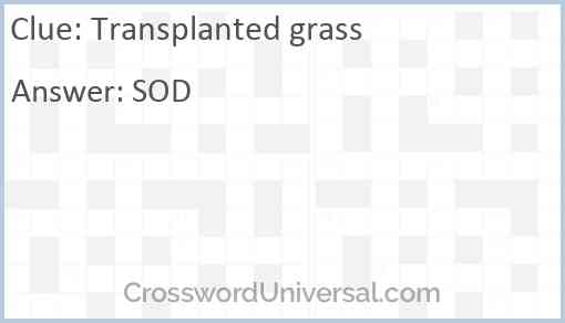 Transplanted grass Answer